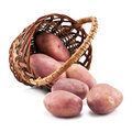 Potatoes in the basket Royalty Free Stock Image