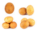 Potatoes fresh on a white background Royalty Free Stock Photography