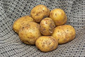 Potatoes group of new in linen towel Stock Photo