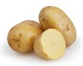 Potatoes isolated on white Royalty Free Stock Photo