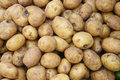 Potatoes pattern of fruits background Royalty Free Stock Photo