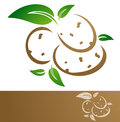 Potatoes potato illustration over white background Royalty Free Stock Photos