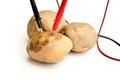 Potatoes power Royalty Free Stock Photo