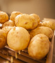 Potatoes raw fresh close up Royalty Free Stock Photo