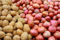 Potatoes and red onions Stock Images