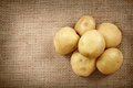 Potatoes on a rustic canvas closeup of pile of new worn sack cloth with copyspace Royalty Free Stock Photos