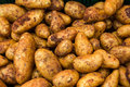 Potatoes for selling at vegetable market Stock Image