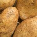 Potatos Royalty Free Stock Photos