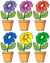 Pots with flowering plants illustration of the on a white background Royalty Free Stock Photos