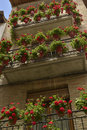Pots and geraniums with hanging at the balcony Stock Photos