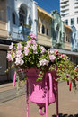 Potted flowers situated on city street located new regent in christchurch new zealand Stock Photos