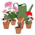 Potted flowers and watering can flower room flower pots Stock Photos