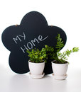 Potted plants and a chalk board Stock Photo