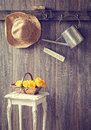 The Potting Shed Royalty Free Stock Photo