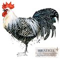 Poultry farming. Chicken breeds series. domestic farm bird