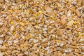 Poultry feed raw material Stock Images