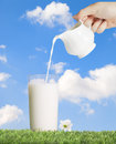 Pouring full cream dairy milk glass Royalty Free Stock Photo