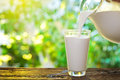 Pouring milk in the glass on background of nature Royalty Free Stock Photos