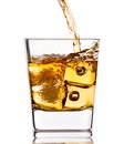 Pouring scotch whiskey in glass with ice cubes on white Royalty Free Stock Photo