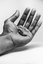 Poverty hand a holding coins expressing Royalty Free Stock Photography