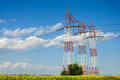 Power grid line Royalty Free Stock Photo