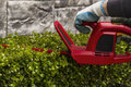 Power Hedger Trimming Hedges Royalty Free Stock Photography