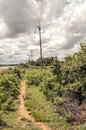 Power line surrounded by nature beside a road in kenya on a cloudy day it s a vertical picture Stock Photo