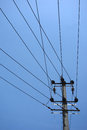 Power lines under blue sky Stock Photo