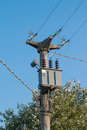Power pole with electric transformer blue sky in background Royalty Free Stock Photo