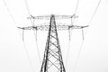 Power pylon below foggy morning netherlands Royalty Free Stock Photography