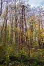 Powerline in the forest. Old style steel pole, rusted. Autumn. 02 Royalty Free Stock Photo