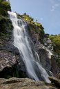 Powerscourt Waterfall in Ireland Stock Image