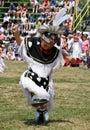 Powwow Grass Dancer Stock Photos