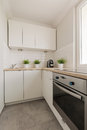 Practical cupboards and oven image of solid in contemporary kitchen Royalty Free Stock Photo