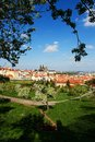 Prague castle blossoming apple tree in the background with Royalty Free Stock Image