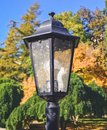 Prague lamp with autumn still life III Royalty Free Stock Photo