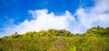 Prairie and blue sky landscape photography Royalty Free Stock Image