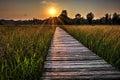 Prairie Boardwalk Sunset Royalty Free Stock Photo