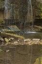 Prairie Creek Falls Royalty Free Stock Photo