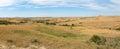 Image : Prairie, Grass, Banner, Panorama, Panoramic each white grass