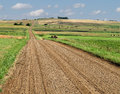 Prairie gravel road through fields. Stock Photo