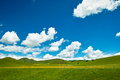 Prairie mongolia under the blue sky Stock Photos