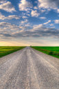 Prairie road gravel backroad through alberta farmland at sunset Royalty Free Stock Photo