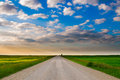 Prairie road gravel backroad through alberta farmland at sunset Stock Image