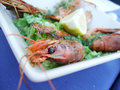 Prawn Delicacy Royalty Free Stock Photo