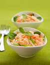 Prawn noodle salad Royalty Free Stock Photos