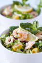 Prawn shrimp salad with lemon tomato close up shallow dof Royalty Free Stock Image