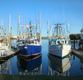 Prawn Trawlers At Dock Stock Images