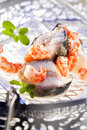 Prawns and fish Royalty Free Stock Photography
