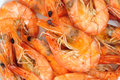 Prawns, shrimps Stock Photos